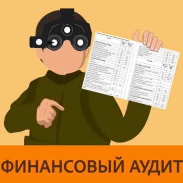 Финансовый аудит http://rishennyae.com/